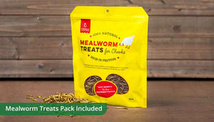 free range pack includes mealworm treats for chickens