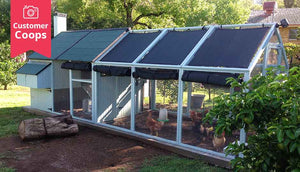 mansion chicken coop and run with shade cloth side view