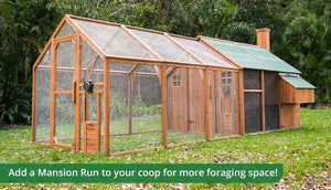 mansion chicken coop and run for extra foraging space
