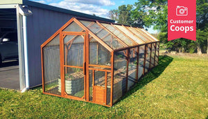 the mansion run chicken coop as a vegetable garden