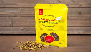 mealworm chicken treats included in Beginners Pack