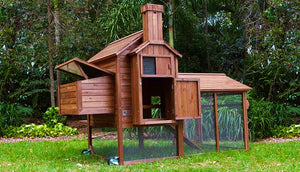 chicken hen house with run and nesting box