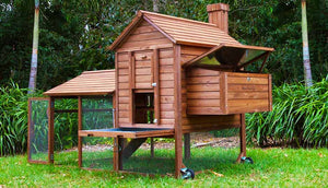 outdoor hen house with nesting box and cleaning tray
