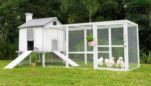 outdoor white penthouse chicken coop in garden hero shot