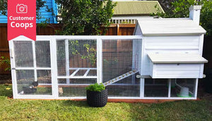 lovely white painted customer coop with plant pot