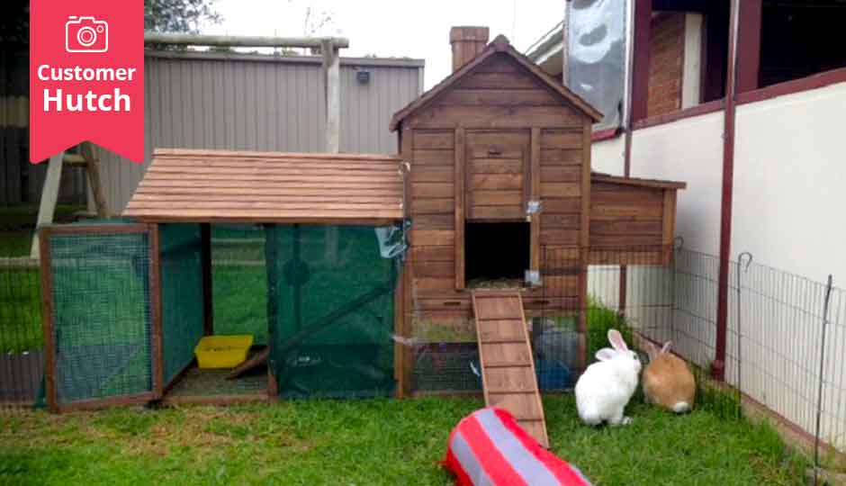 The Wiggle Den Rabbit Hutches Our 1 Rabbit Enclosure