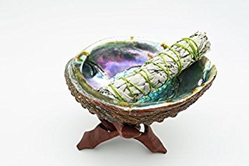 Buy Abalone Shell with Tripod Stand and Sage Online
