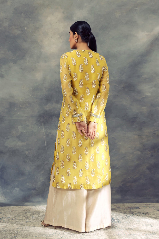 Ambi Print Long Kurta With Pallazo Pants