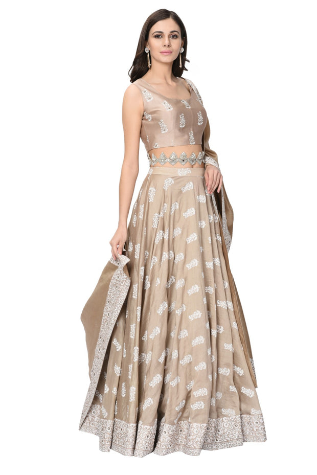 Light Beige Printed Embroidered Lehenga Set