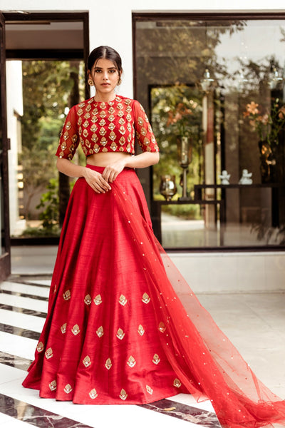 Red Leaf Motif Lehenga Set