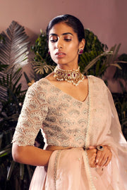 Nude Embroidered Lehenga Set