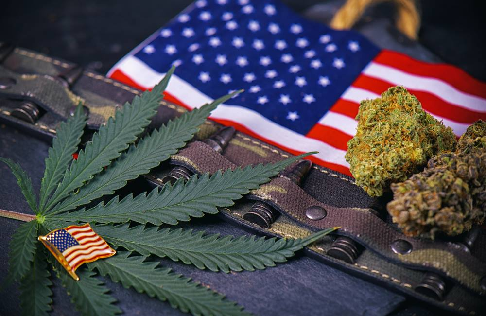 Why Are Military Veterans Crazy About Cannabis?