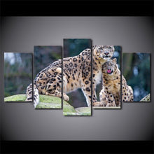 Load image into Gallery viewer, HD Printed 5 Pieces Leopard Tigers