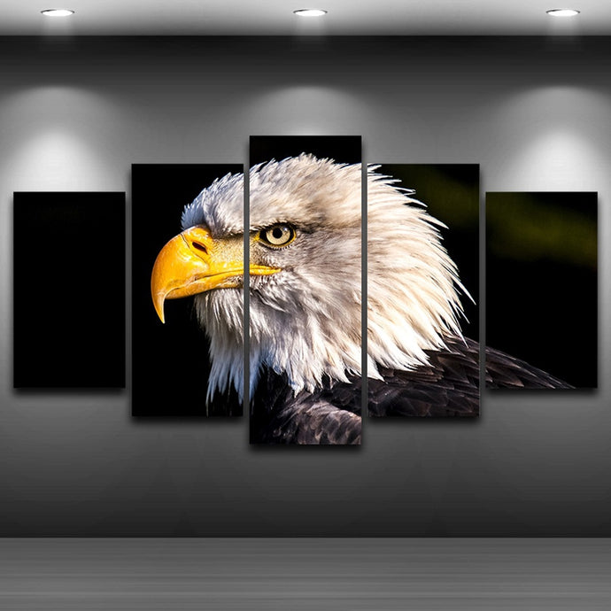 HD Printed 5 Pieces Bald Eagle