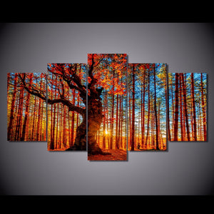 HD Printed 5 Pieces Forest Sky Trees Autumn Foliage Landscape