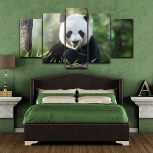 HD Printed 5 Pieces Cute Panda