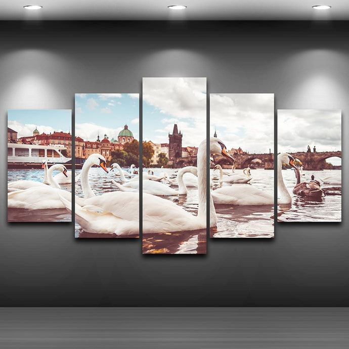 HD Printed 5 Pieces White Swans Near Charles Bridge In Prague