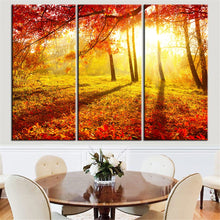 Load image into Gallery viewer, HD Printed 3 Pieces Red Trees at Sunset