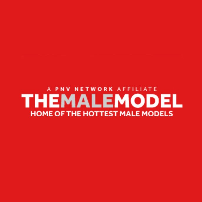 THE MALE MODEL