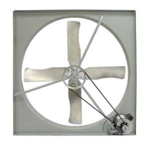 "TPI 48"" 230/460V 1 HP 3PH Commercial Belt-Drive Exhaust Fan - CE48B3"