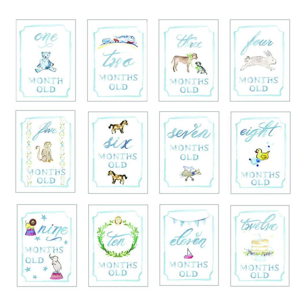 Month By Month Cards-Accessories