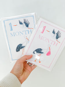 Baby Girl Monthly Milestone Cards