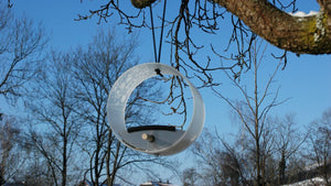 Pick.up modern bird feeder hanging from a tree