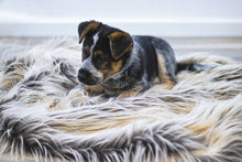 Load image into Gallery viewer, long, gray, faux fur dog blanket bedding by FuRmanity