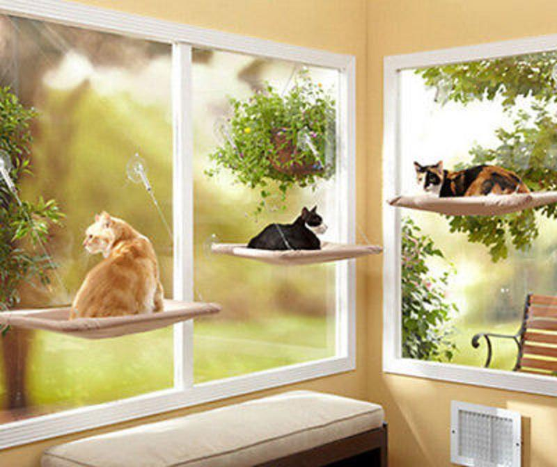 Cat Hammock Window , Cat Seat