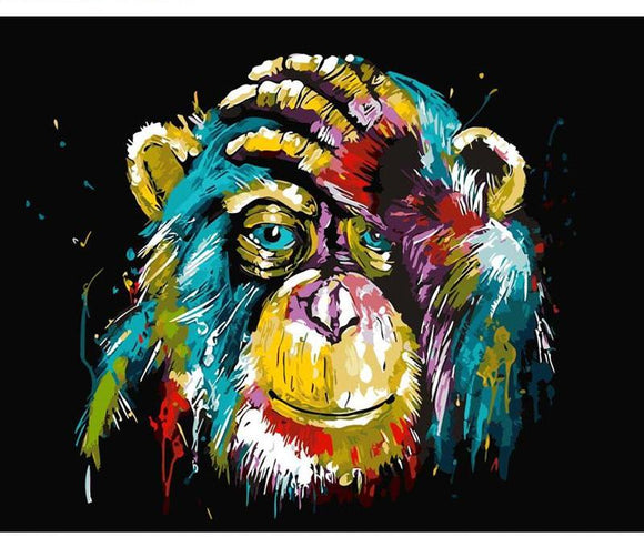 Colorful Monkey - willydeals