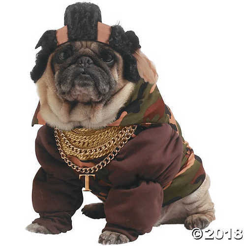 Fancy Dress Halloween Pet Dog Costume