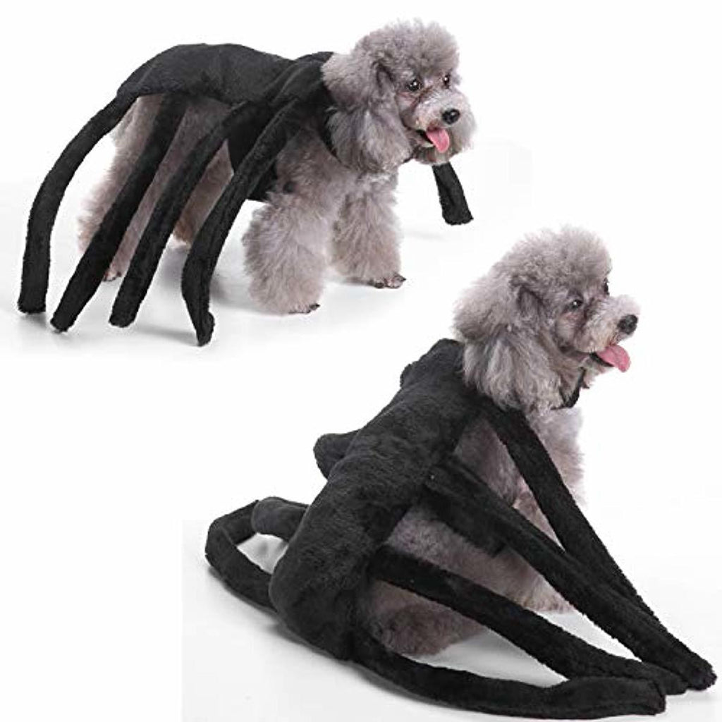 Halloween Spider Costume for Pets