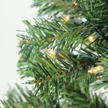 "Load image into Gallery viewer, 6.5' x 46"" Pre-Lit Niagara Pine Medium Artificial Christmas Tree - Clear Lights"