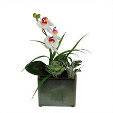 "Load image into Gallery viewer, 12"" Spring Time Orchid and Succulents Artificial Floral Arrangement"