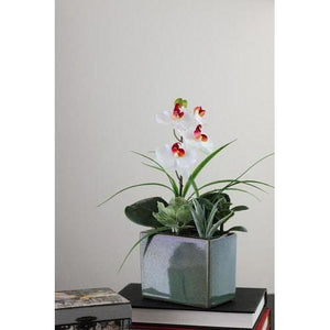 "12"" Spring Time Orchid and Succulents Artificial Floral Arrangement"