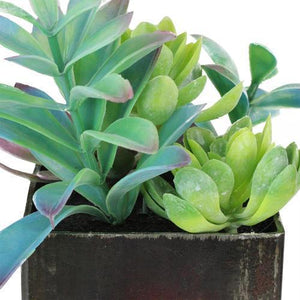 "7"" Artificial Succulents Arrangement in Distressed Square Pot"