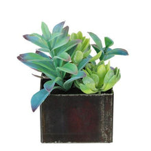 "Load image into Gallery viewer, 7"" Artificial Succulents Arrangement in Distressed Square Pot"