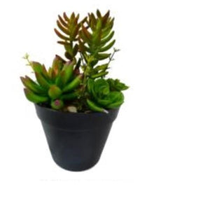"8"" Artificial Mixed Succulent Plant Arrangement in Black Pot"