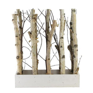 "18.75"" Mixed Branch Bouquet in White Wood Box Table Top Decoration"