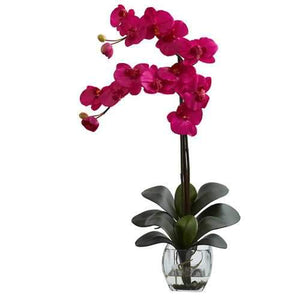 Double Phal Orchid w/Vase Arrangement Silk