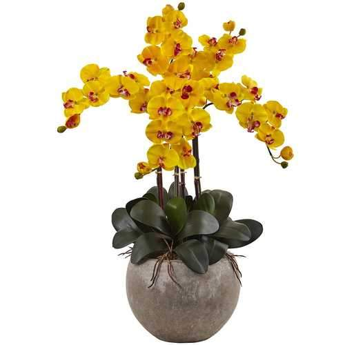 Phalaenopsis Orchid Arrangement with Sand Colored Bowl Silk