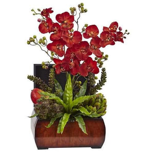 Autumn Orchid & Succulent Arrangement w/Chest Silk