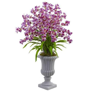 Giant Blooming Orchid Arrangement with Urn Silk