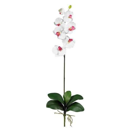 Phalaenopsis Stem (Set of 12) Silk Flower