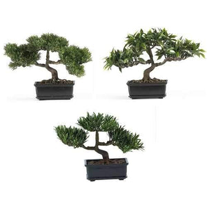 12 Bonsai Silk Plant Collection (Set of 3)""