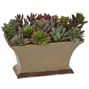 Mixed Succulent Artificial Plant in Vase Silk Plants