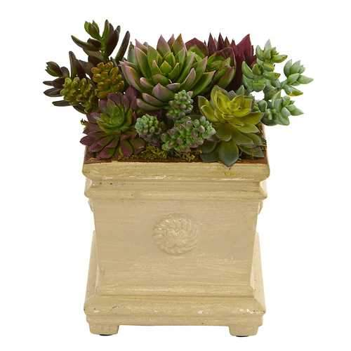 Mixed Succulent Artificial Plant in Decorative Vase Silk Plants