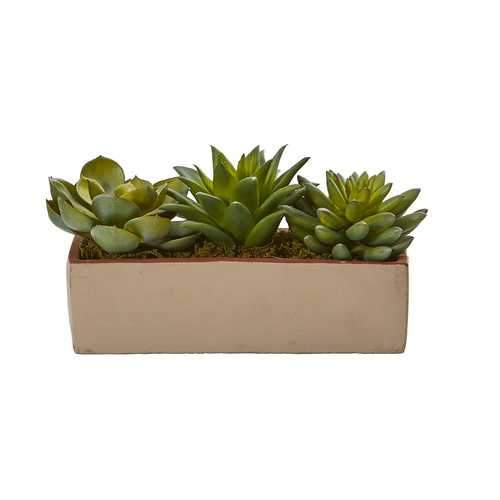 5 Mixed Succulent Pot Silk Plants