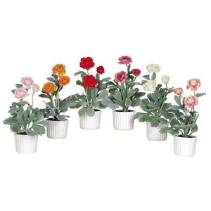 Ranunculus w/White Vase (Set of 6) Silk Arrangement