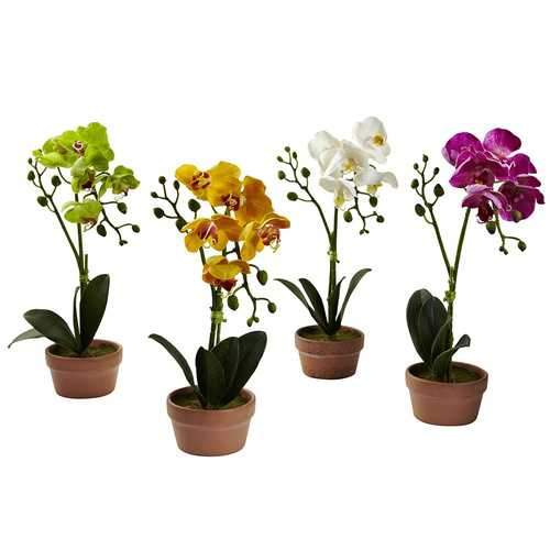 Phalaenopsis Orchid w/Clay Vase (Set of 4) Silk Arrangement
